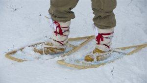 LOTN snowshoes